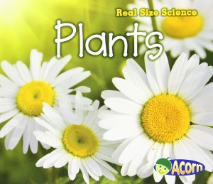 Plants Life Size Science